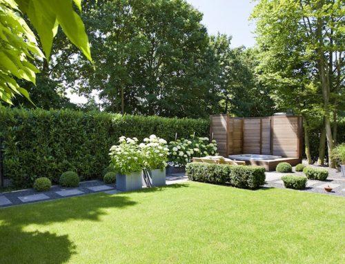 Lacné oplotenie – prečo propagujeme oplotenie zo živého plota